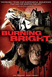Subtitles Burning Bright - subtitles english 1CD srt (eng)